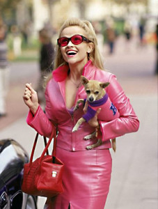 เสื้อผ้าสุนัข Legally Blonde