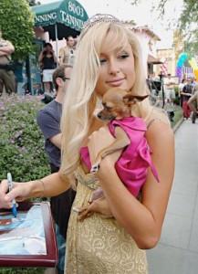 เสื้อผ้าสุนัข Paris Hilton