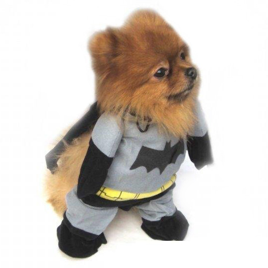 เสื้อผ้าสุนัข Batman