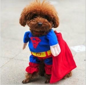 เสื้อผ้าสุนัข Superman