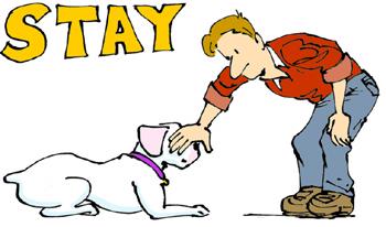 ฝึกสุนัขให้รอ ด้วย Clicker